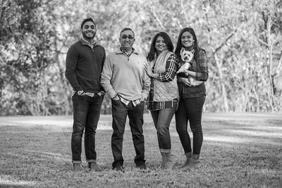 Patel Family 2017