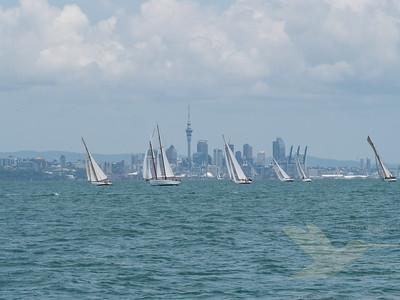Patio Bay Race 2019