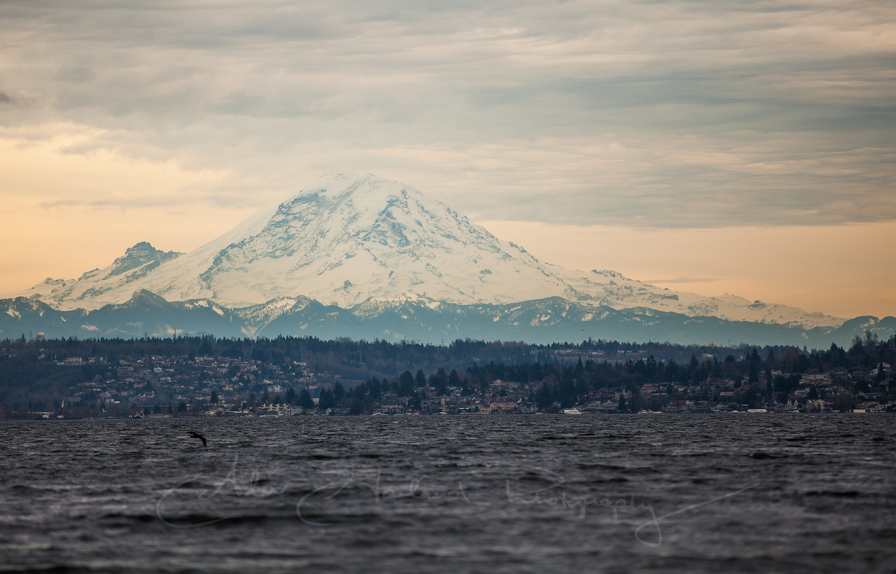 Lake Washington and Mt. Rainier