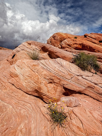Valley of Fire SP NV