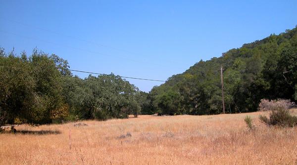 Uvas Estates