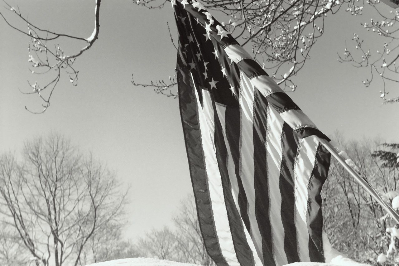 Flag in Winter