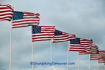 Row of American Flags, Saints Peter and Paul Cemetery, Petersburg, Iowa