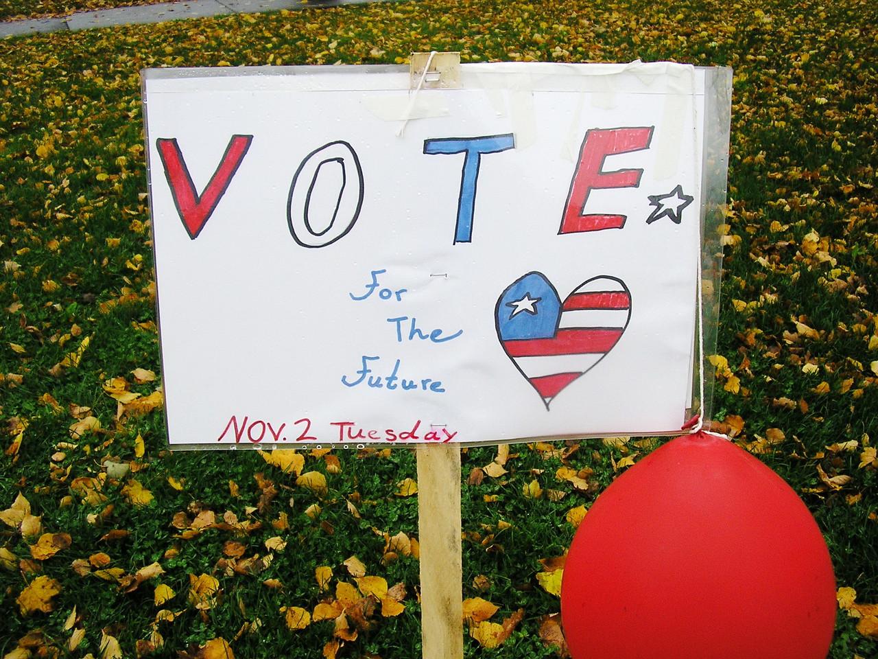 """VOTE for the Future, Nov. 2, Tuesday"""
