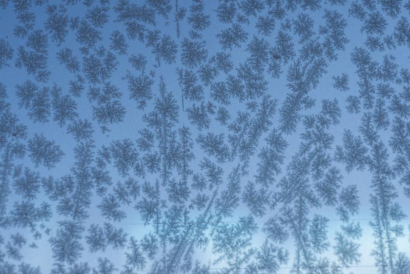 Ice Pattern - Black & Blue
