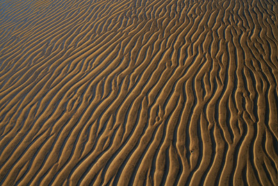 Ripples in the Sand, Down by the Bay, Bowers Beach, DE