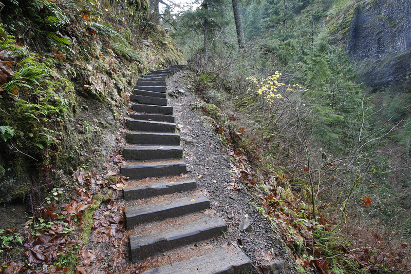 On the trail to Wahclella Falls, Columbia Gorge, Or
