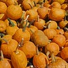 Pumpkins Bennington
