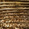 Portabella Mushroom  8/1/2012