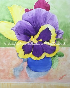 A Pose of Pansies
