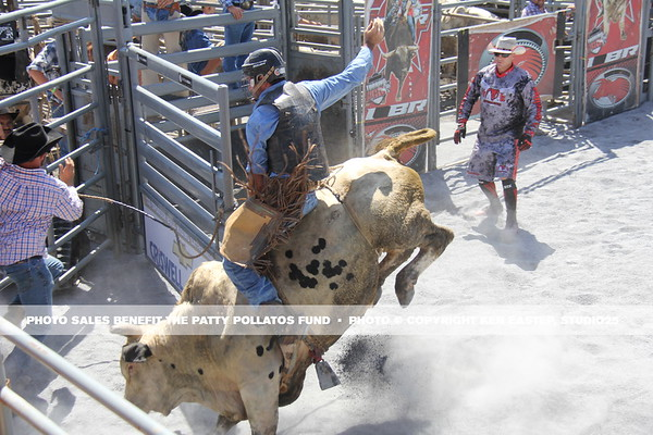 Battle of the Beast Rodeo — 2015 Patty Pollatos Fund Family Fundraiser FUNomenon