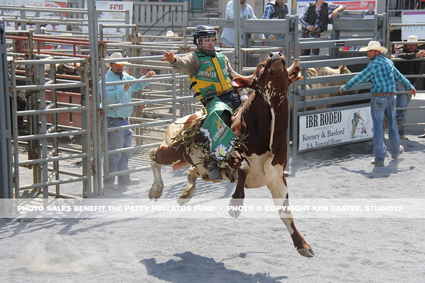 2016 Family Fundraiser FUNomenon — Rodeo and Misc Other