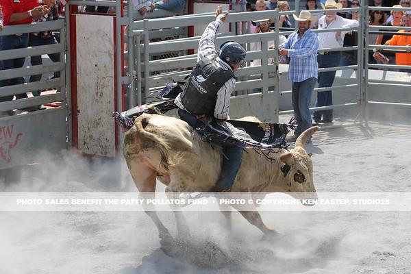 2017 Family FUNomenon Rodeo