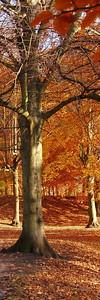 2010-10-23S_JD038