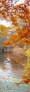 2010-10-23S_JD024