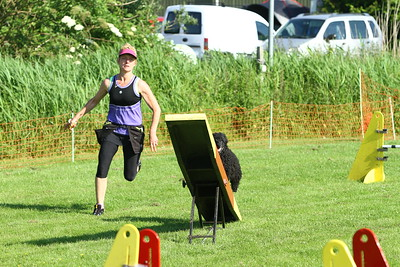 Agility Workshop Friesland 2014