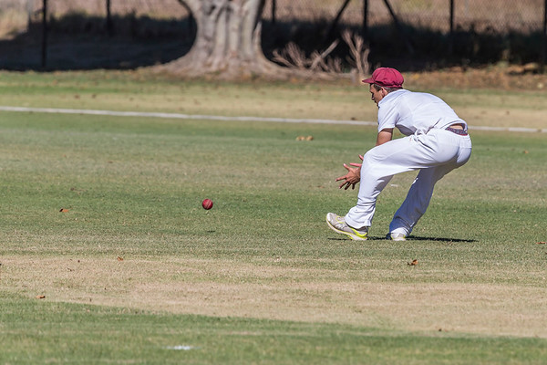 PRG Cricket 19A vs. Affies