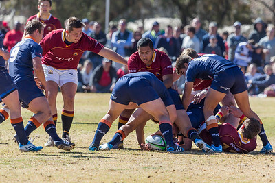 Rugby 19A vs. Grey Bloem