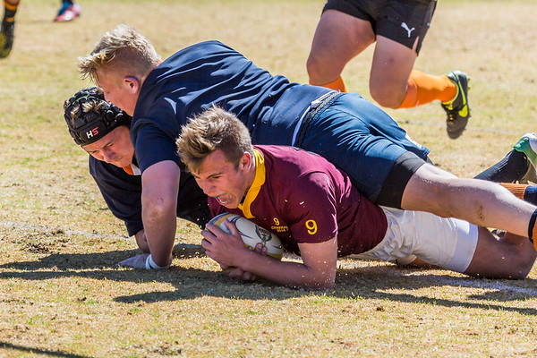 PRG Rugby 19C vs. Grey Bloem