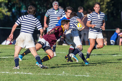 Rugby 19D vs. SACS
