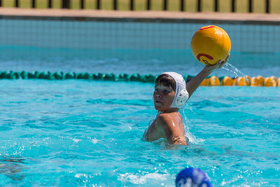 Water Polo 14C vs. Rondebosch