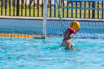 Water Polo 15D vs. Rondebosch