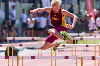 Prestige Athletics 2016 PRG Hurdles