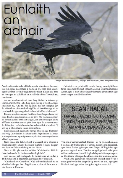 2005 article from the Record magazine of the Free Presbyterian Church featuring a photo of a raven about to land in Moosonee by Paul Lantz