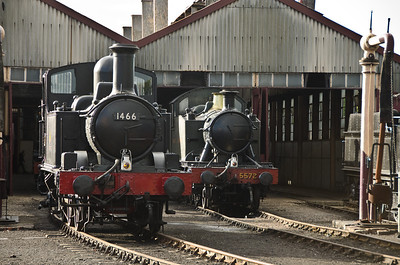 1466 and 5572