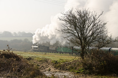 30120 at Corfe Common