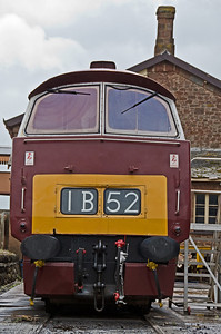D1010 'Western Campaigner' at Williton