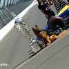 May 30:  Michael Andretti's dog and the Borg-Warner Trophy after the 100th Running of the Indianapolis 500.