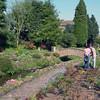 Waddington Gardens
