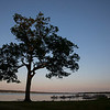 A silhouette tree near Miller Bell Tower, during a sunset at Chautauqua Lake on Wednesday, June 14, 2017. PAULA OSPINA / STAFF PHOTOGRAPHER