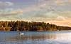 Paradise Lake, Ca.