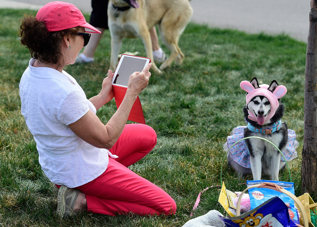 . BROOMFIELD, CO - April 20, 2019:  Cathy Balog photographs her dog Cleopatra in her Easter Bonnet. Dogs competed in an Easter Bonnet show and hunted for Easter eggs at Broomfield Commons on Saturday. Paws in the Park is presented by and benefits Broomfield High School\'s Future Business Leaders of America.  (Photo by Cliff Grassmick/Staff Photographer)