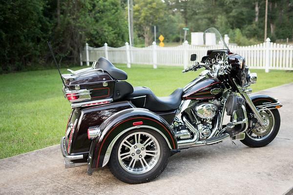 Pawsy's Trike