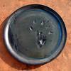 Beaverware Plate