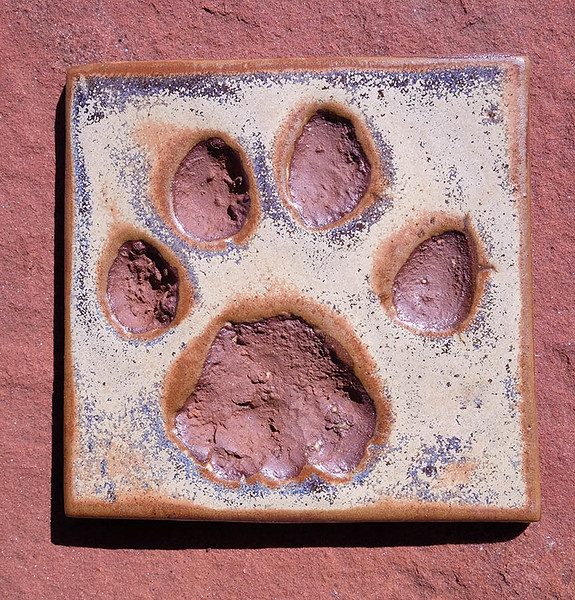 Mountain Lion Tile