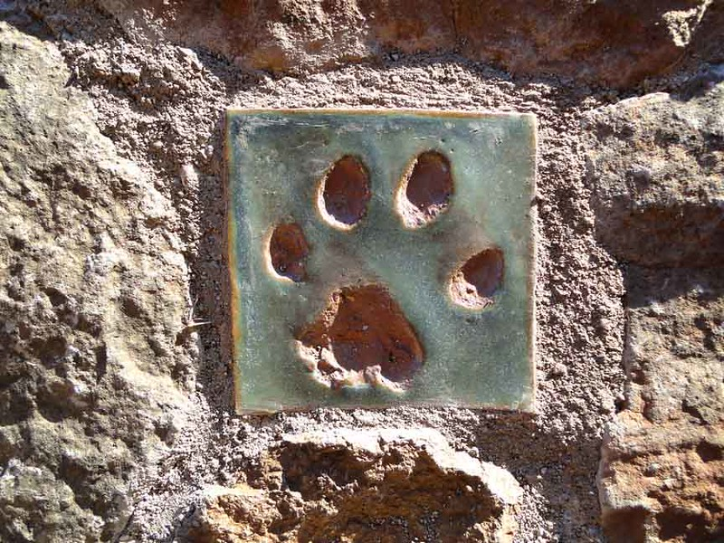 Mountain Lion Tile