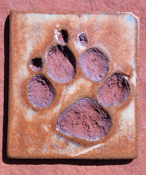 Spotted Hyena Tile