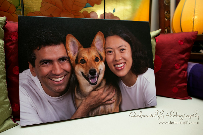 Three gorgeous smiles. A gallery wrapped canvas of Santi and her pawrents, taken in the comfort of their living room. All DeDamselfly pawtraits (with the exception of outdoor shots) are taken in the comfort of the furkids' homes, using professional backdrops and lights. We guarantee a fuss-free and stress-free experience for all. At DeDamselfly Photography, Your Home Is Our Studio.