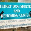 A visit to Soi Dog Phuket