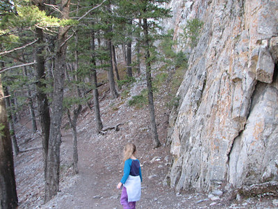 the trail along the edge of the Limestone Cliffs