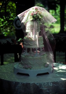 Taken with Canon T70, Kodachrome 64 slide film, Scanned from slide , Laura's wedding