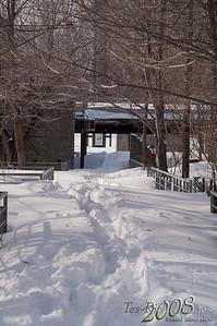 20080310 Grands Parcs de Montréal - Parc de l'île de la visitationpict0008