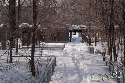 20080310 Grands Parcs de Montréal - Parc de l'île de la visitationpict0009