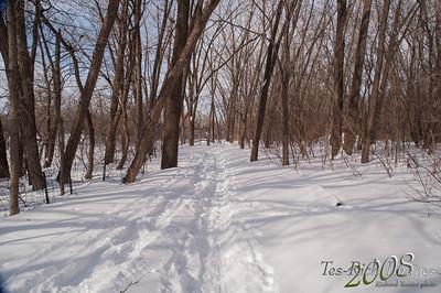 20080310 Grands Parcs de Montréal - Parc de l'île de la visitationpict0010