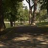20080913_paysage_Montréal_Parc-Lafontaine_0045
