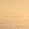 Lever de soleil brumeux sur Kerlouan